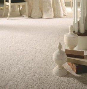 Carpet Cleaning Woodland CA California